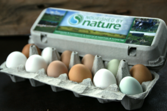 Free-Range Egg Bundle