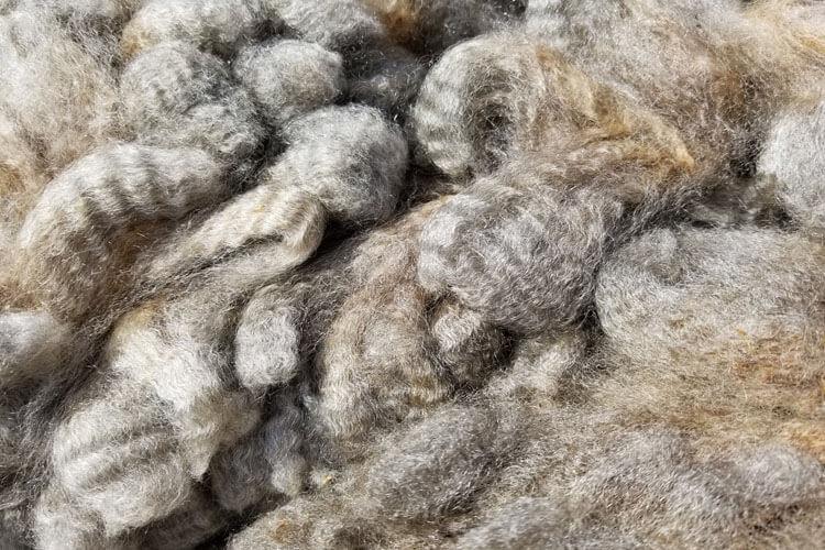 Raw Fleece - Violet