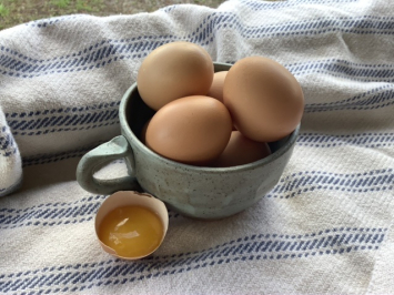 Pastured Soy-Free Eggs