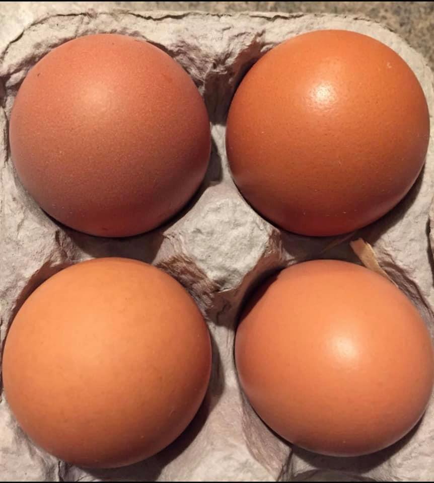 Eggs, Large