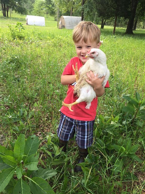 Liam-holding-chicken-2016-(Medium).jpeg
