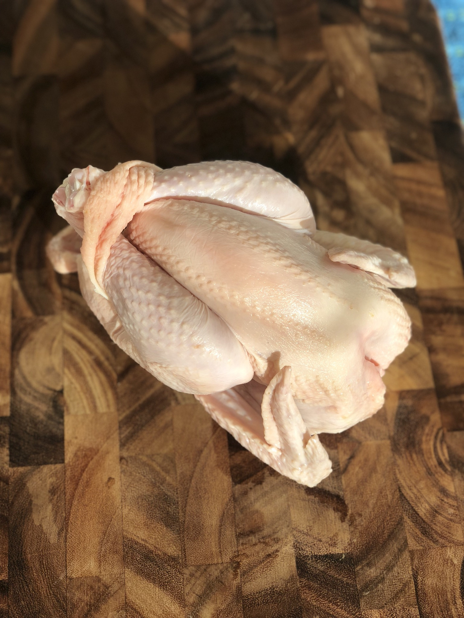 Chicken - Heritage Sasso Naked Neck (2 - 3 lbs.)