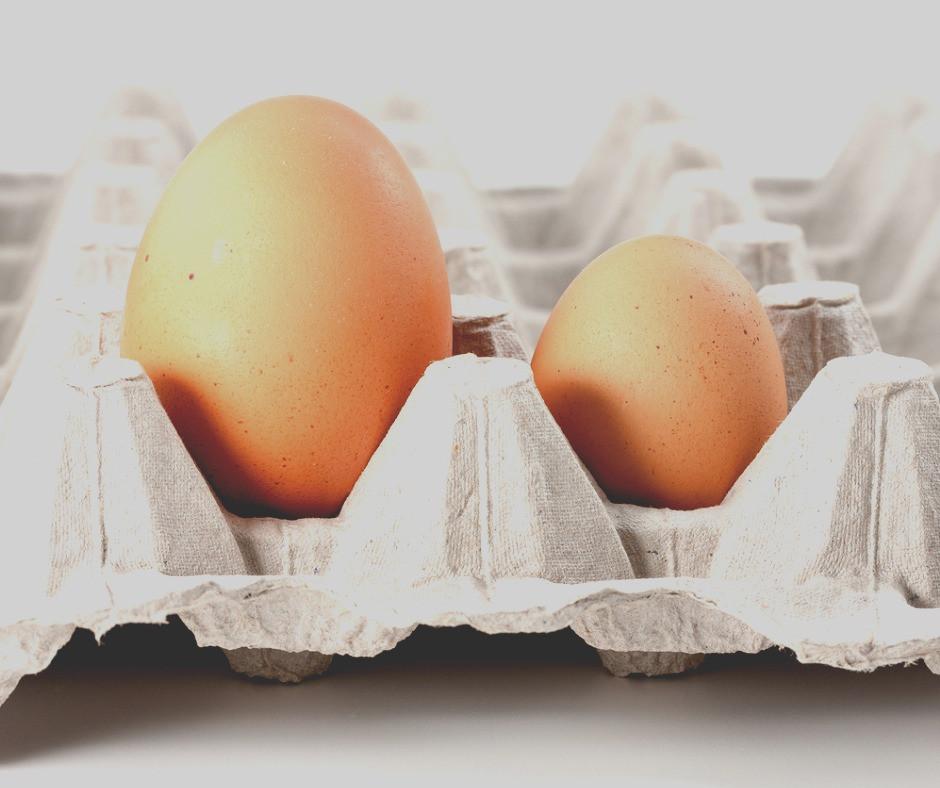Eggs- Flat Pullet Eggs