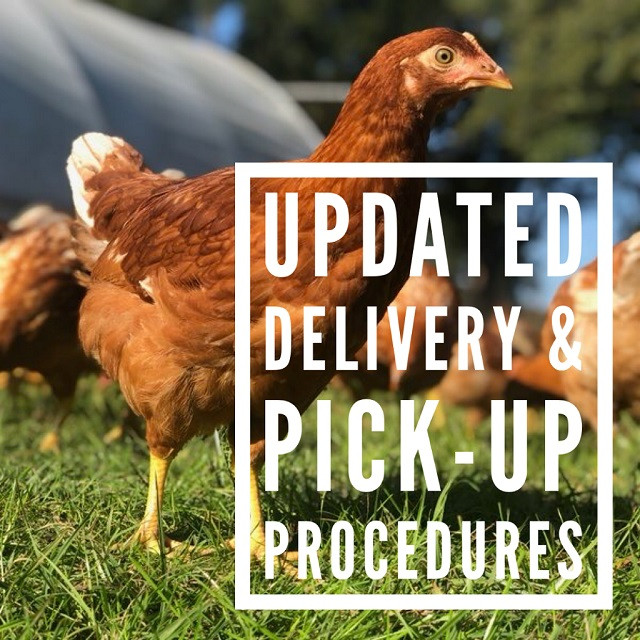 Delivery Updates and procedures due to coronavirus health risks.