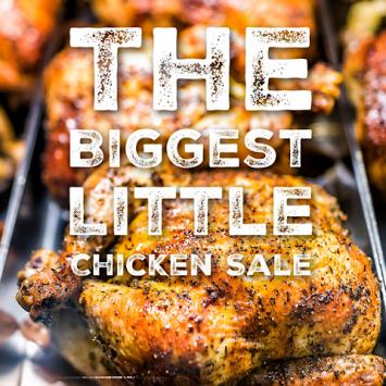 The BIGGEST little Chicken SALE
