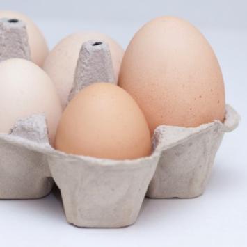 Eggs - Flat - JUMBO