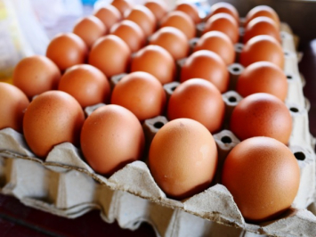 Eggs - Flat