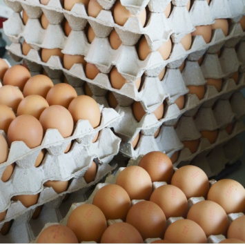Eggs - 10 Flats