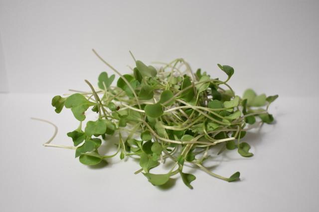 Little River:  Organic Micro Broccoli - 2oz