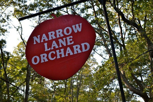 Narrow Lane Orchard