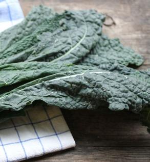 Little River Organic: Tuscan Kale