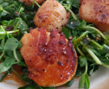 Triton Seafood: Sea Scallops