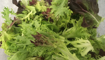 Little River: Organic Spring Mix - 5 oz