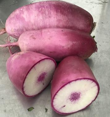 Organic Daikon Radish