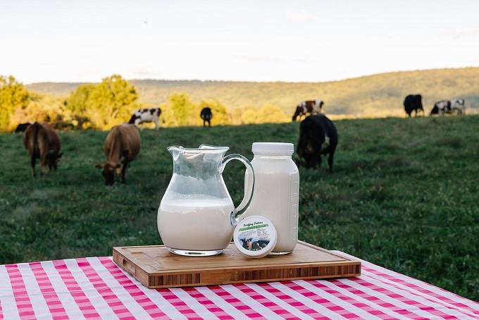 Grass-Fed Dairy