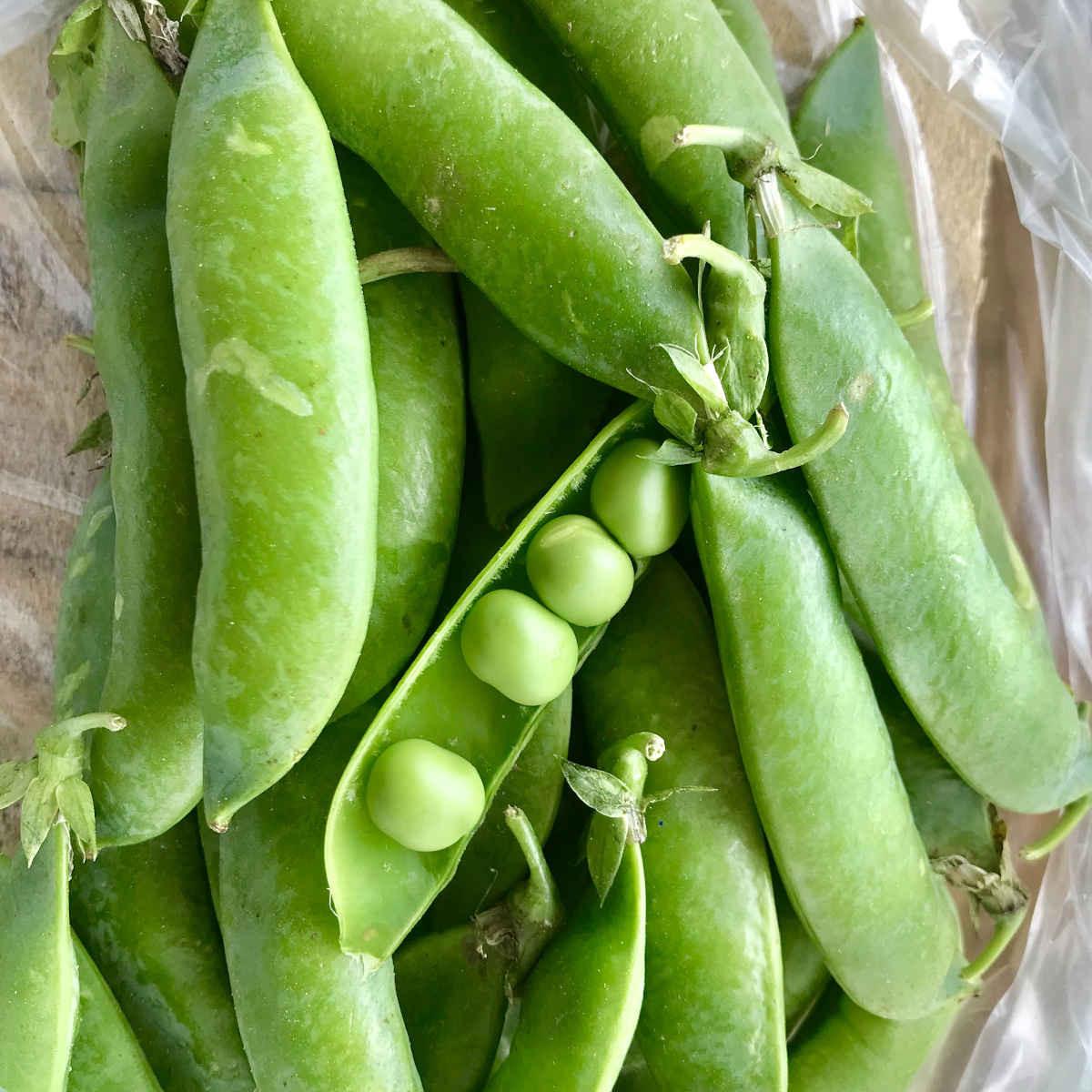 Fresh Local Peas