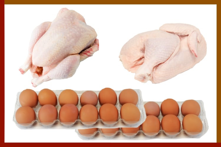 Taster's Bundle:  Chicken and Eggs Bundle