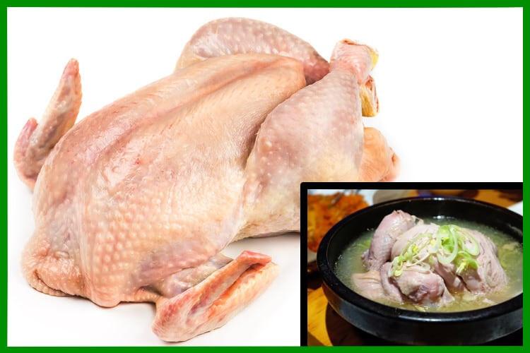 Pastured Chicken Stew Chickens