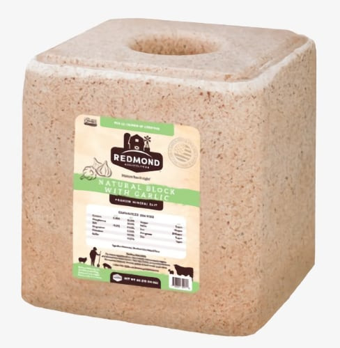 Redmond Natural Trace Mineral Salt Block With Garlic