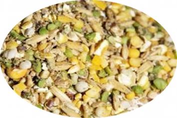NCO Duck Layer Feed 17%
