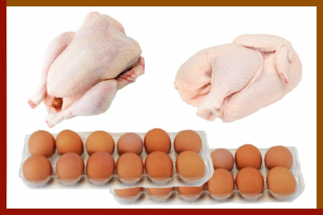 Assortments: Chicken and Eggs