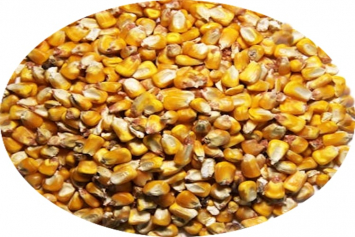 New Country Organics Corn