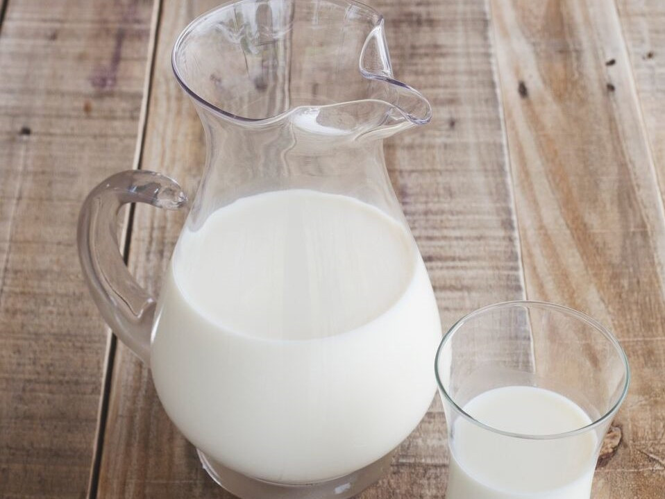 Milk, 1 Gallon