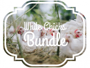 White Chicks Bundle