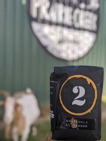 DoubleShot Coffee: Guatemala El Tambor