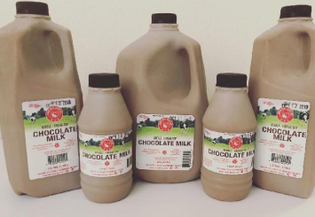 Chocolate Milk, 1/2 gallon