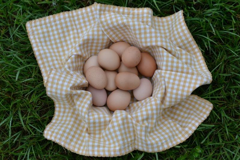 Eggs, Dozen, Regular