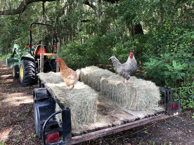 Farm Tours Available