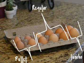 Eggs, Dozen, Jumbo