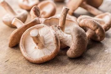 Shiitake Mushroom, Fresh