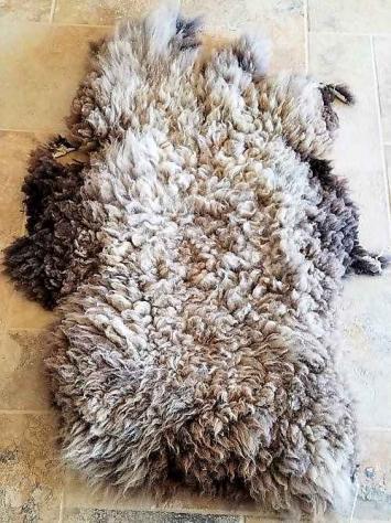 Grassfed Sheep Skin, Multi-color