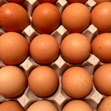 1 Dozen Pasture-Raised Chicken Eggs