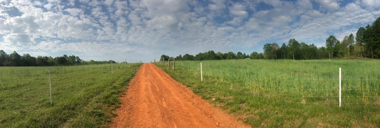 Walking Farm Tour