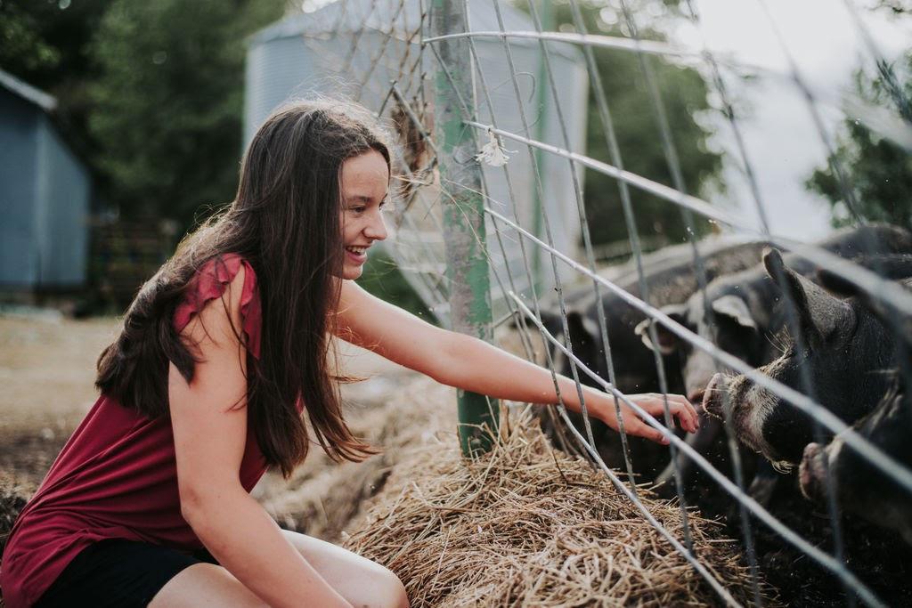 How do we raise premium heritage pork?