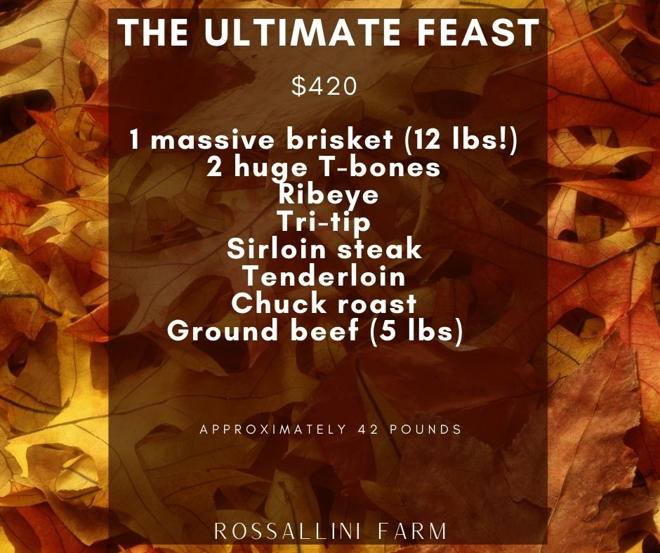 The Ultimate Feast