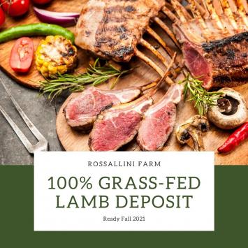 Deposit - Lamb