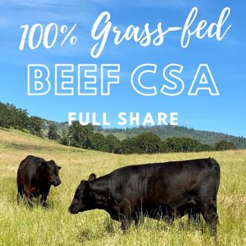 Beef CSA - Full Share 3 months