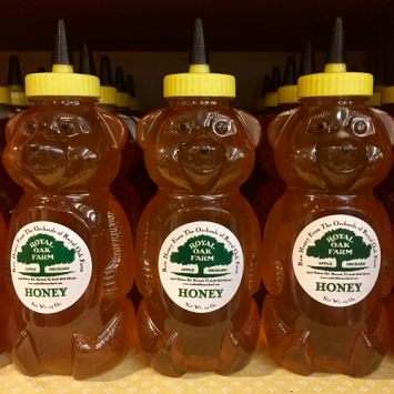 Honey - 24oz Bear