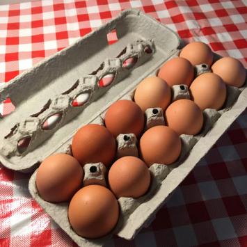 Eggs - Jumbo (dozen)