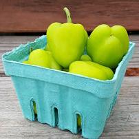Peppers - Baby Bells (organic)