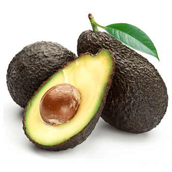 Aguacate MEXICANO HASS