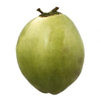 Coco de Agua