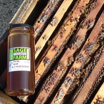 Local Sage Honey!