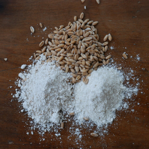 Spelt Flour, Castle Valley Mill