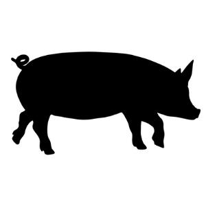 Mangalitsa Ham Slices, bone-in