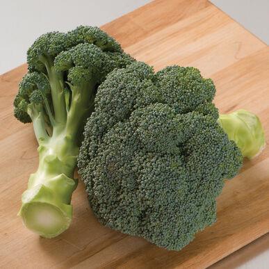 Plants, Veggies, Broccoli, 4-pack